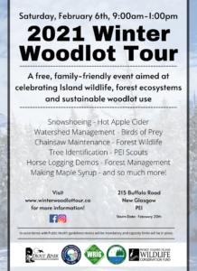 Winter Woodlot Tour 2021